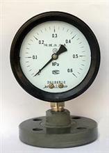 防强腐全塑隔膜压力表-产品展示-品质好