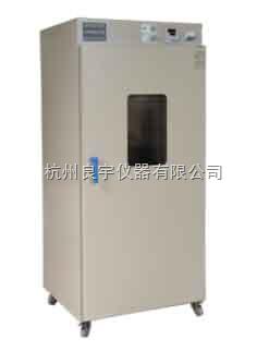 上海博迅电热鼓风干燥箱图片
