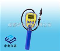 GTGT系列氣體泄漏檢測儀
