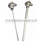 四川耐磨型熱電偶,太原防爆熱電偶價格,熱電偶廠家