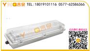 LED防爆灯批发|LED防爆灯厂家|BLD180E一体式LED防爆应急日光灯