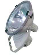 ZT6900A防水防尘防震投光灯,广照型壁灯