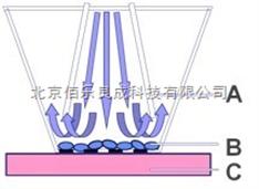 Cultex细胞染毒暴露技术