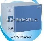 上海一恒电热恒温培养箱DHP-9162