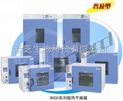 上海一恒鼓风干燥箱DHG-9015A