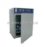 ZY/HH.CP-T二氧化碳培养箱