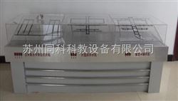 TKMAC-12矿井开拓方式立体模型