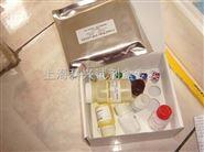 鲑鱼补体蛋白4(C4)ELISA试剂盒 供应