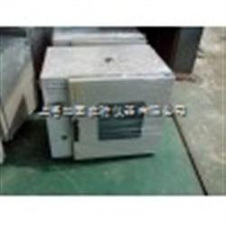 DGG-9140A卧式鼓风干燥箱  上海培因