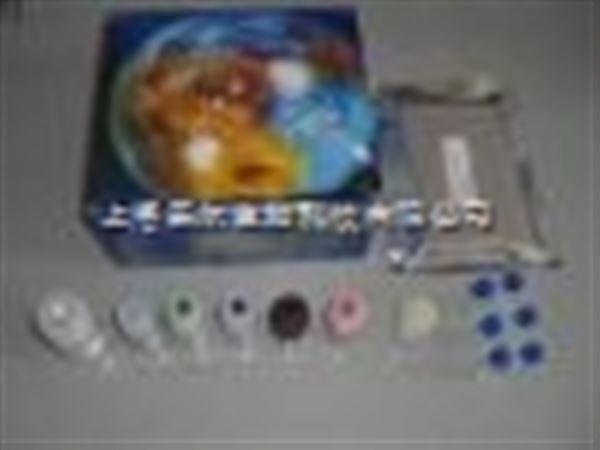 人肠脂肪酸结合蛋白(iFABP)ELISA试剂盒