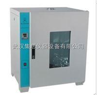 HXY73-HPX-250隔水恒温培养箱