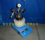 实验室微型磁力搅拌高温高压反应釜