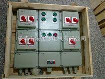 BXX51-2BXX51防爆检修箱非标