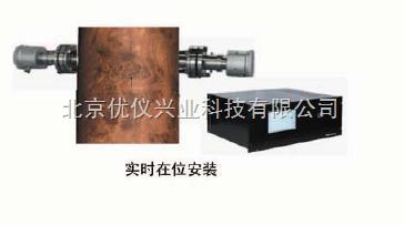 氯含氧分析仪