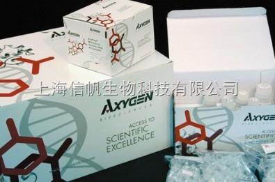 人抗衣原体热休克蛋白抗体(CHSP Ab) ELISA试剂盒上海现货供应,提供一对一咨询