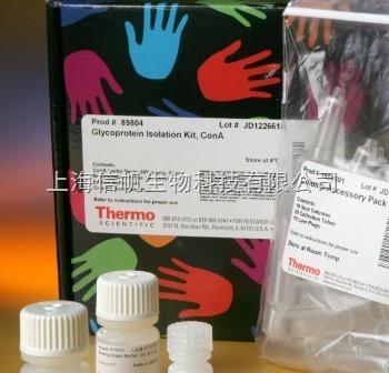 兔硫酸肝素糖蛋白(HSPG) ELISA试剂盒,顺丰包邮