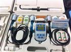 上海三信便携式参数测量仪SX751
