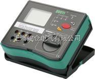 DY5103 绝缘电阻多功能测试仪