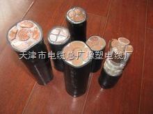FS-YJV防水电力电缆FS-YJV-0.6/1kv电缆