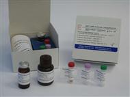 人磷酯酰肌醇特异性磷酯酶C(PIPLC)ELISA试剂盒