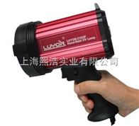 LUYOR-3103P磁粉探伤紫外灯