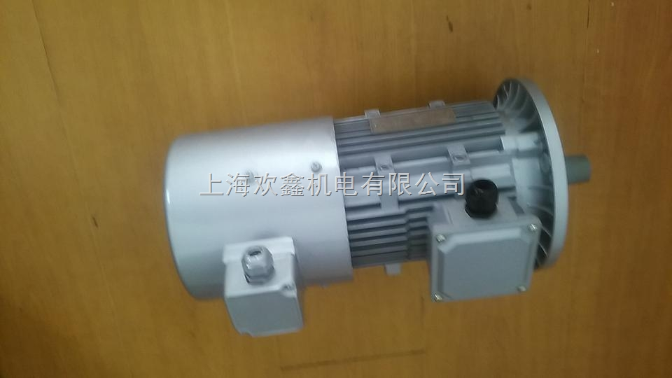 安丘變頻 電機YVF90-1.1KW-B5