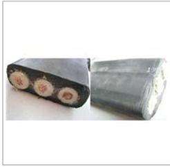 硅橡胶护套扁电缆 硅橡胶护套扁电缆