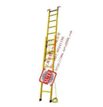 JYT-S-4米绝缘升降单梯