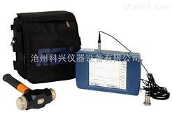 RSM-PRT型基桩低应变检测仪