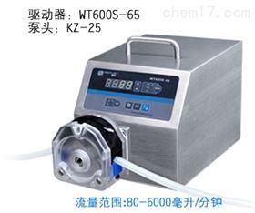 WT600S-65蠕动泵