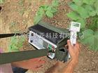 植物光合蒸腾速率测定仪
