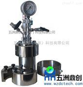 TFM微型反應釜 不銹鋼磁力高壓釜廠家直銷