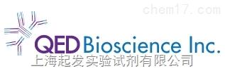 QED Biosciencea代理