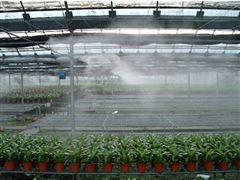 深圳温室大棚喷雾降温系统