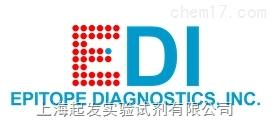 Epitope Diagnostics Inc代理