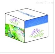 兔抗脑组织抗体(ABAb)检测试剂盒