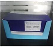 兔结缔组织生长因子(CTGF)检测试剂盒