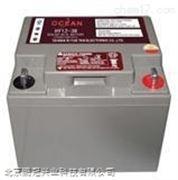 OCEAN免维护蓄电池HY12-200 12V200AH/20HR