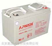 APNKN阀控式密封蓄电池FCG12-26 12V26AH