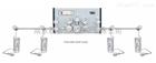 P3300/3400/3500系列双侧式特气汇流阀