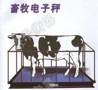 動物專用電子秤