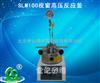 河南团购SLM100视窗高压反应釜