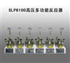 河南包邮SLP6100高压多功能反应器