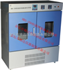 HBS-250立式恒温恒湿振荡摇床培养箱