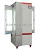 BSG-400400L BSG-400光照培养箱(药品强光稳定试验箱)