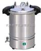 YXQ-SG46-280SYXQ-SG46-280S电加热手提式灭菌器