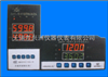 ZWSSZWSS-2型系列通用双通道智能数显仪