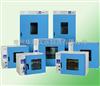 101-0A101-0A数显电热恒温鼓风干燥箱
