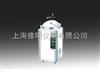 LDZX-50KBSLDZX-50KBS不锈钢立式压力灭菌器