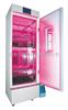 BD-ZRX-250-1兰州红蓝光LED植物生长箱